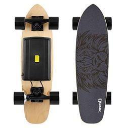 Electric Longboard 10 MPH 10 Miles, 120W Motorized Electric